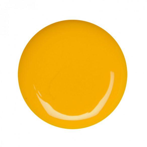 Gel de Color Amarillo 021